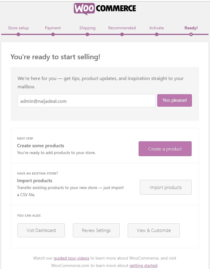 build an ecommerce website in nigeria